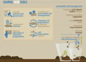 Protecting soils crucial for sustainable future