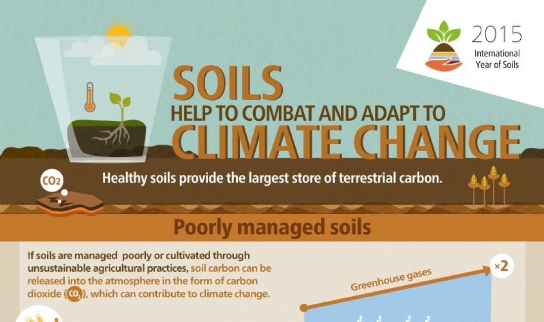 Soils help in the struggle against climate change